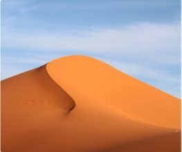 d03 Img Dunes